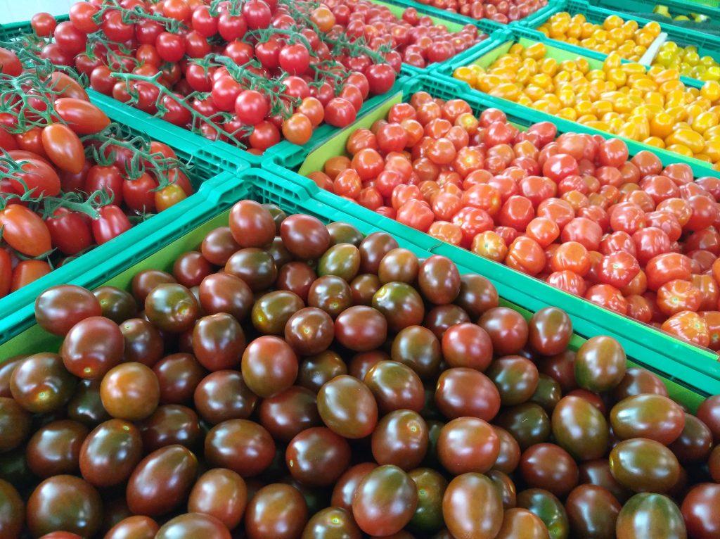 Cherrytomaten Vielfalt