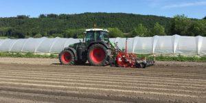 Entstehung Traktor Karotten
